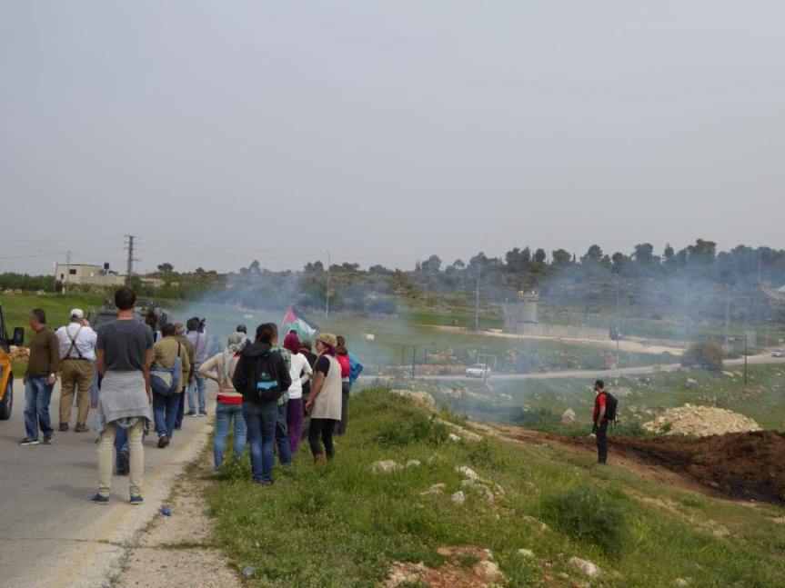tear gas and activists